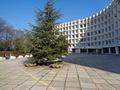 XIX Всероссийская научно-практическая конференция «Перспективы развития современного общества» (Севастополь)